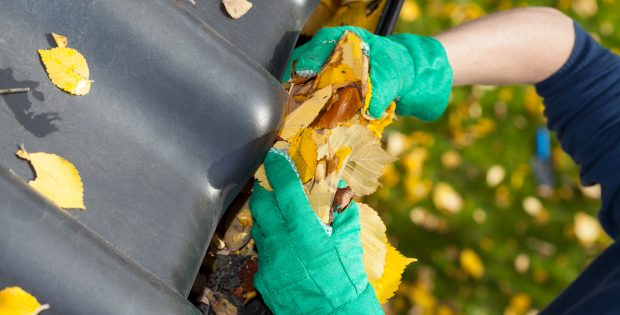 How to have clean gutters
